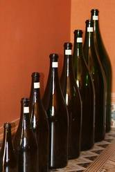 Champagne Bottles- Color